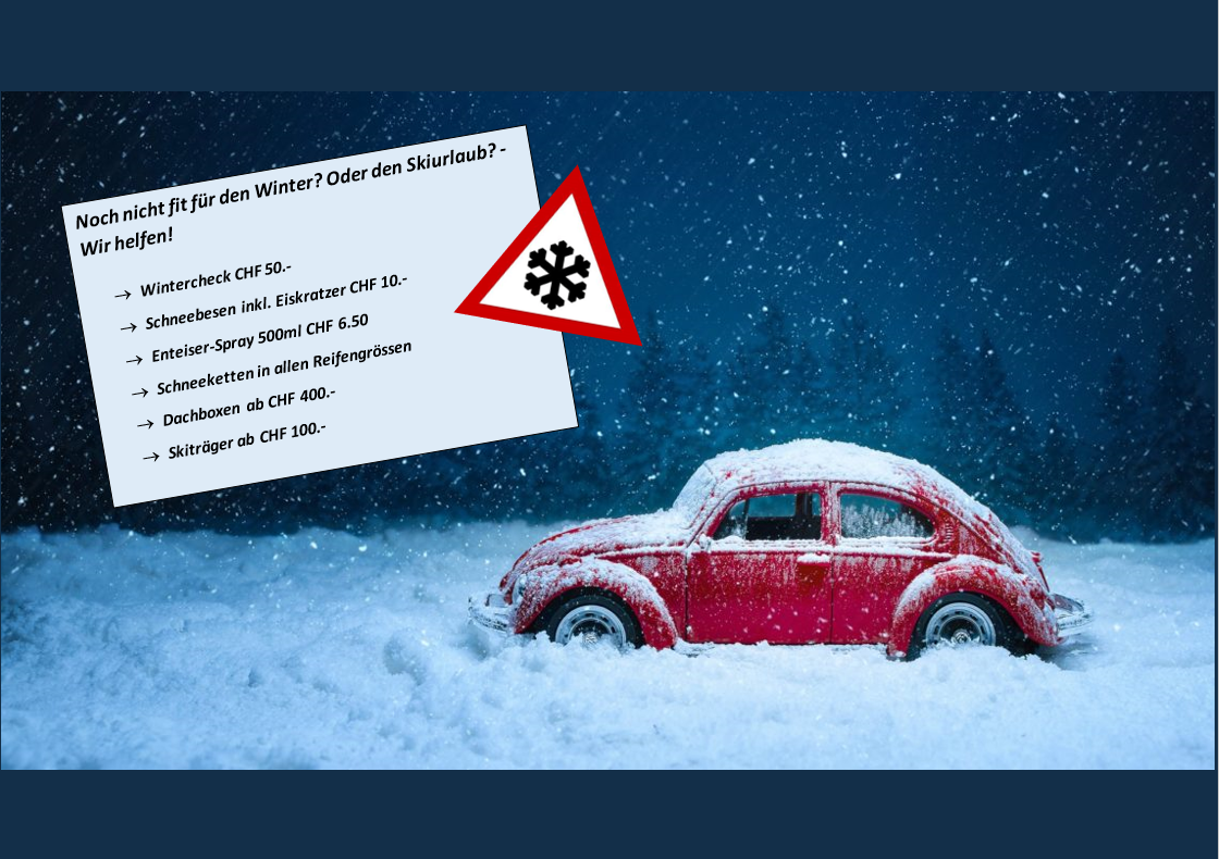 Wintercheck Dez 2019